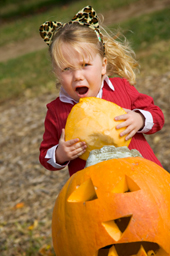 little girl eating a decorated pumpkin.