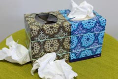 tissue box sanitary tips