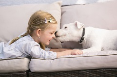 Young girl lying on couch with pet dog
